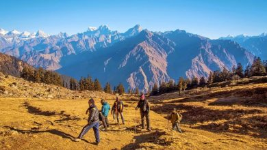 Photo of A Scenic Trekking Trail In Uttarakhand- Kuari Pass!!