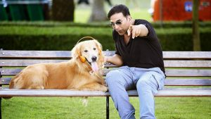 Dog Lovers Should Definitely Watch These Bollywood Movies