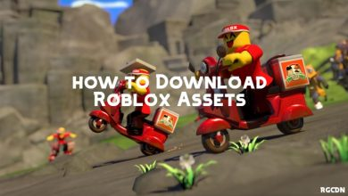 Photo of How to download free Roblox Assets with Roblox Asset Downloader