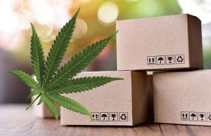 Best Standard for CBD Boxes